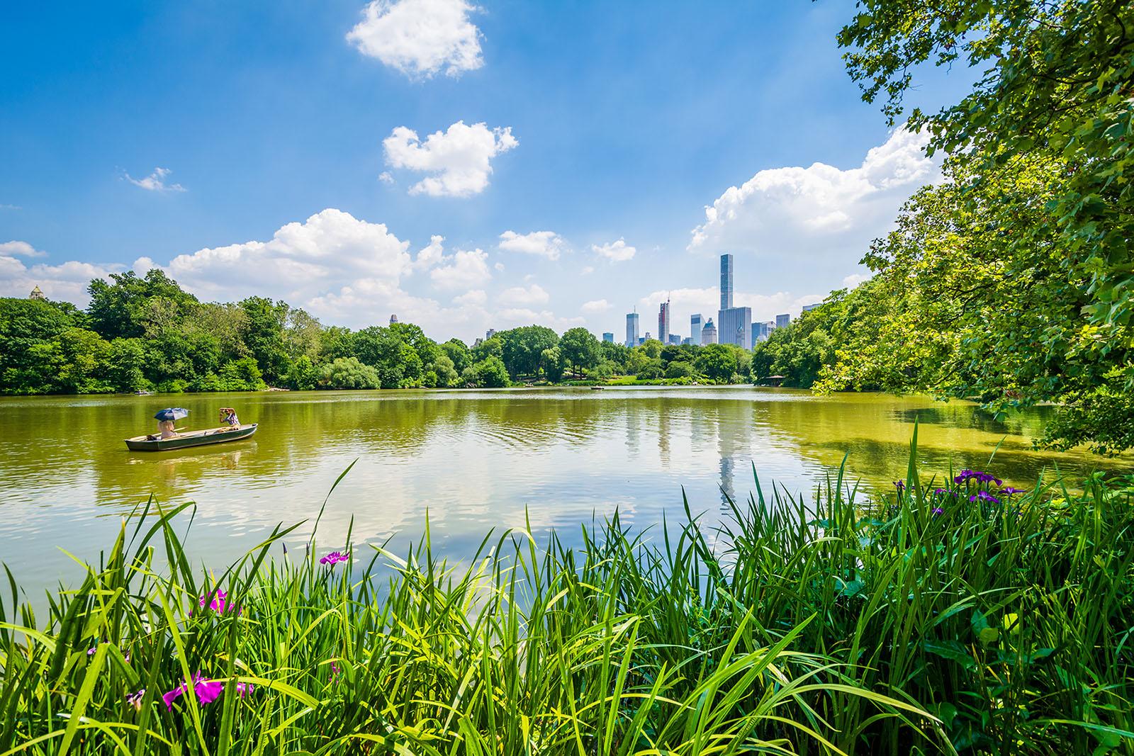 Seneca Village: The African-American Village Underneath Central Park