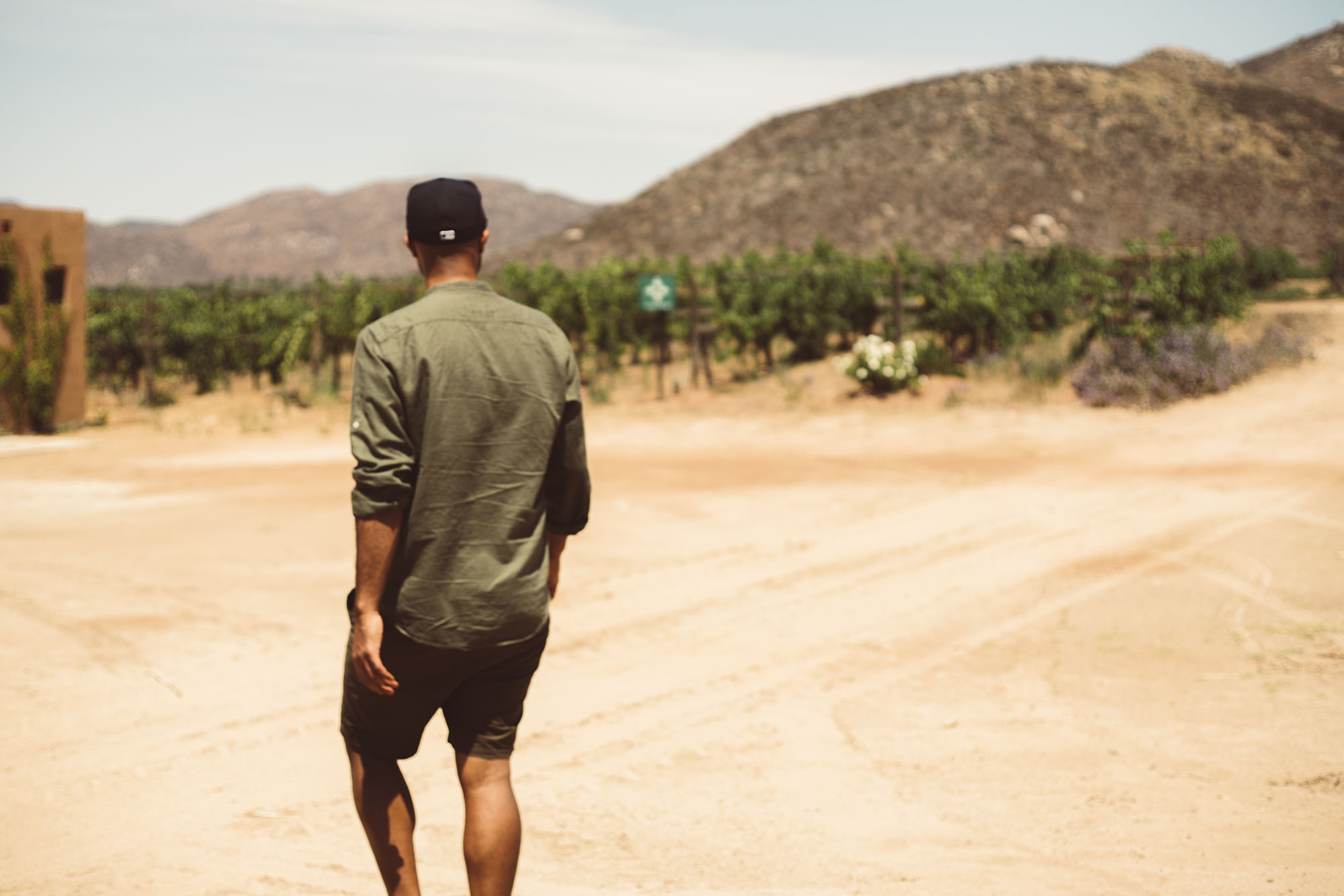 The Boss Guide To Valle De Guadalupe: Mexico's Napa Valley