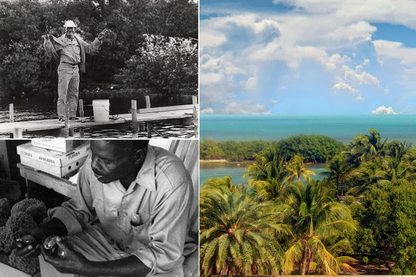 Lancelot Jones: The Black Man That Gave America Biscayne National Park
